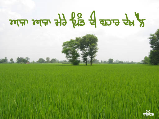 Aaja Aaja Mere Pind Di Bahar Dekh Lai
