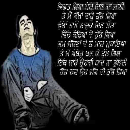 Vichar Gaya Mere Dil Da Jaani